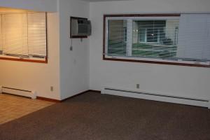 Hillside-living room-kitchen